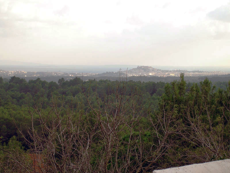 Great plot for sale in Santa Gertrudis