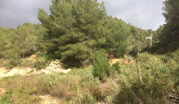 Large plot from 49800 m2 with view to Dalt Villa