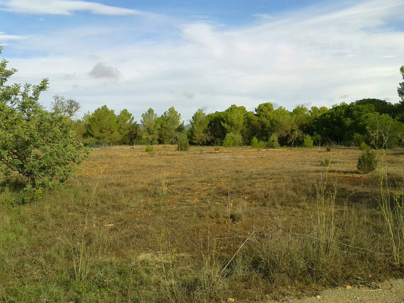 Flat plot for sale in San Antonio