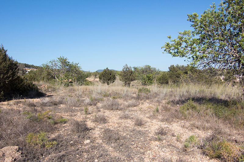 Large land for sale in Es Cubells San Jose
