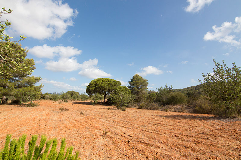 Beautiful located  plot for sale in Santa Eulalia