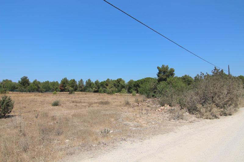 Flat plot for sale in San Antonio