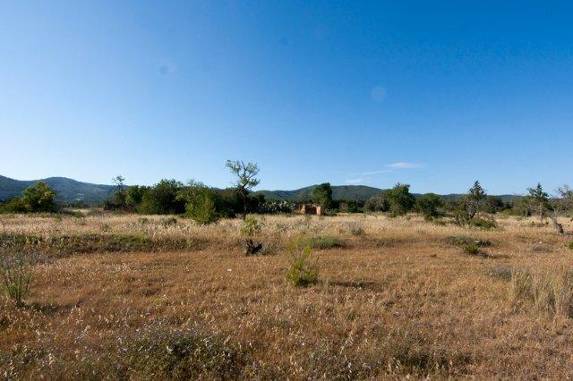 Large plot for sale in San Carlos