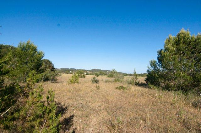 Large plot for sale in San Lorenzo