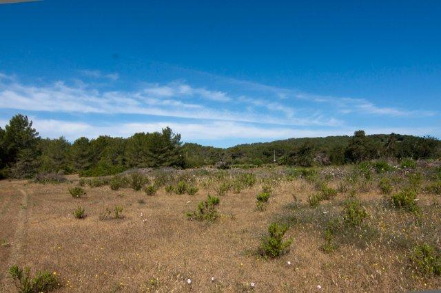 Large plot near Santa Eulalia for sale