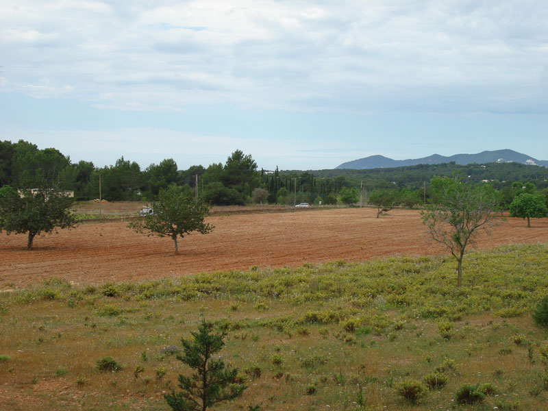 Flat plot in San Carlos Santa Eulalia sale