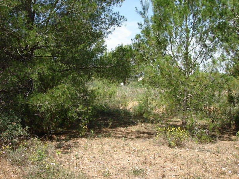 Land for sale in Can Furnet Ibiza
