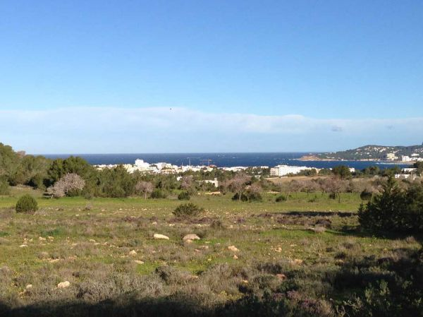 Large land for sale in San Agustin