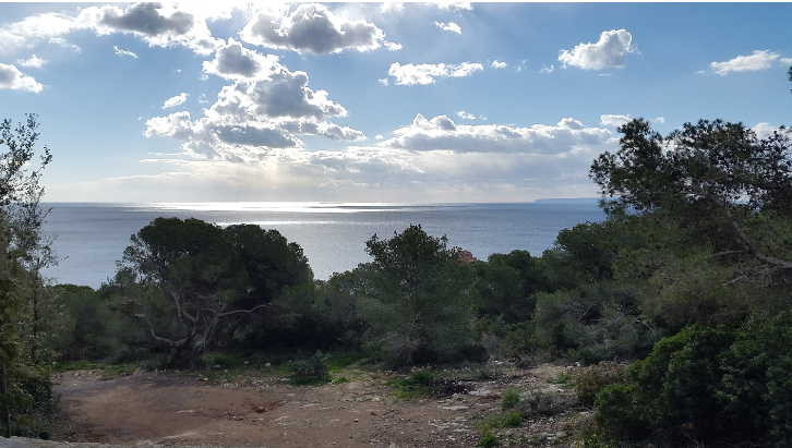 Plot with sea access to small secluded beach cap Martinet