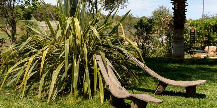 Cozy country finca for sale San Carlos