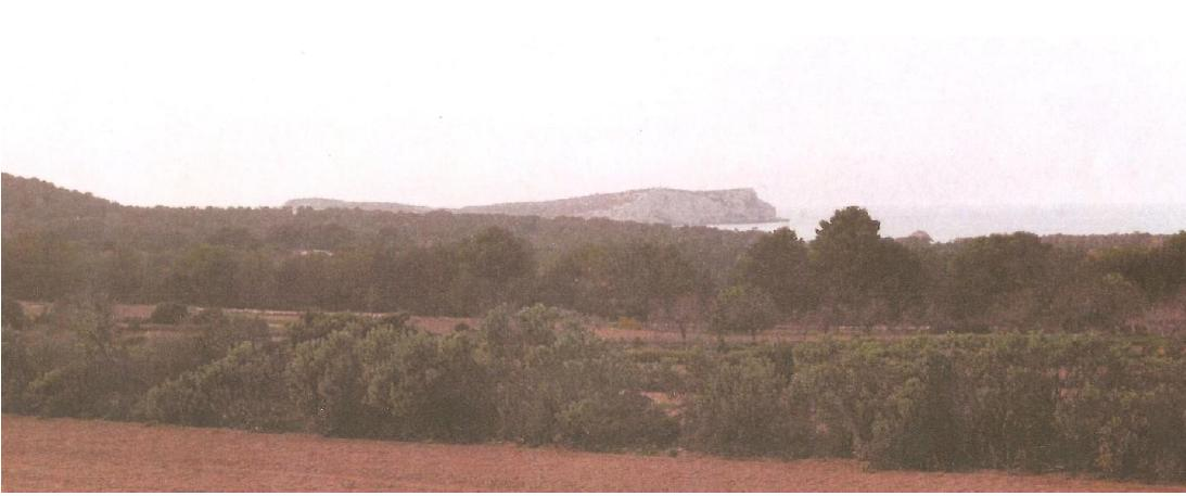 Plot in Cala Bassa with amazing sea views
