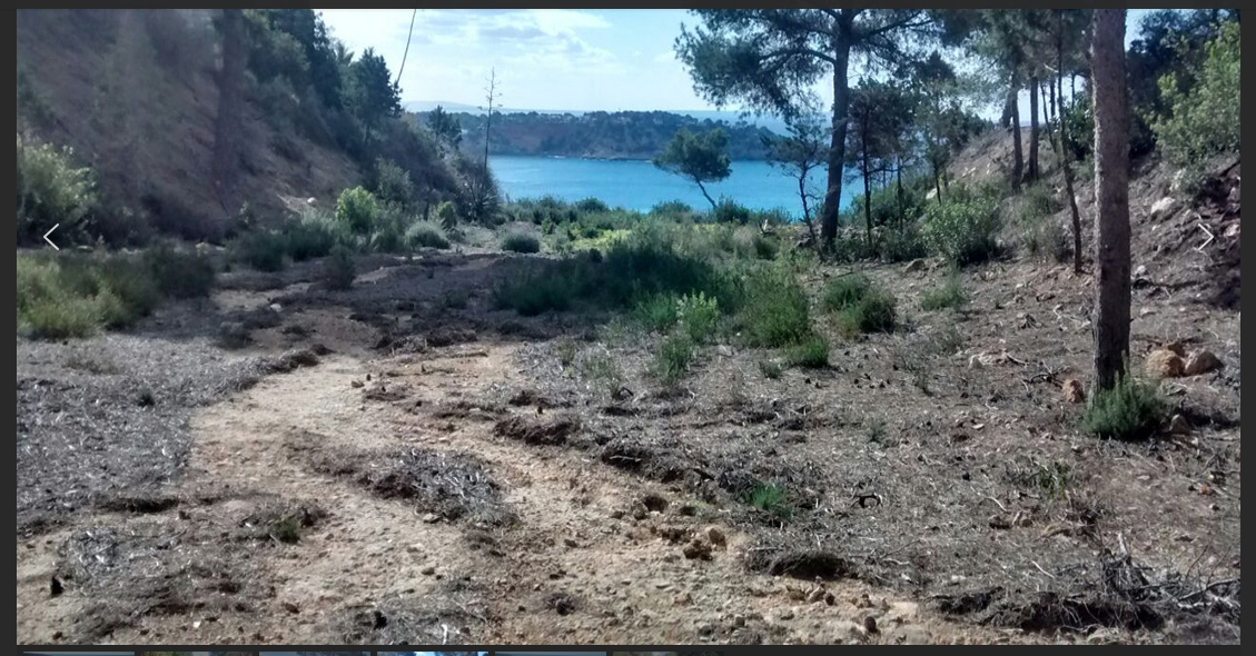 Plot in Vista Alegre with 11.200m2 with access to the sea