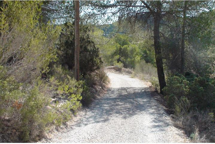 Land with license for build a villa with pool near to San jose