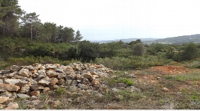 Large plot in San Juan with 198000m2 and licence for Blakstad villa