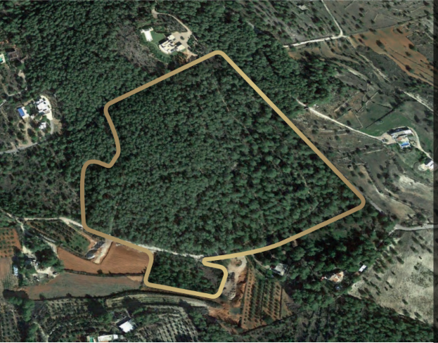 Plot with licence centrally located between Santa Gertrudis and San Rafeal