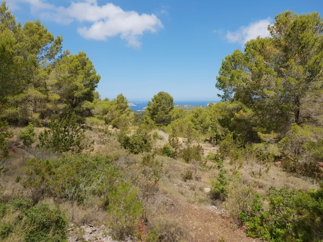 Beautiful land with project located in Cala Tarida with sea views