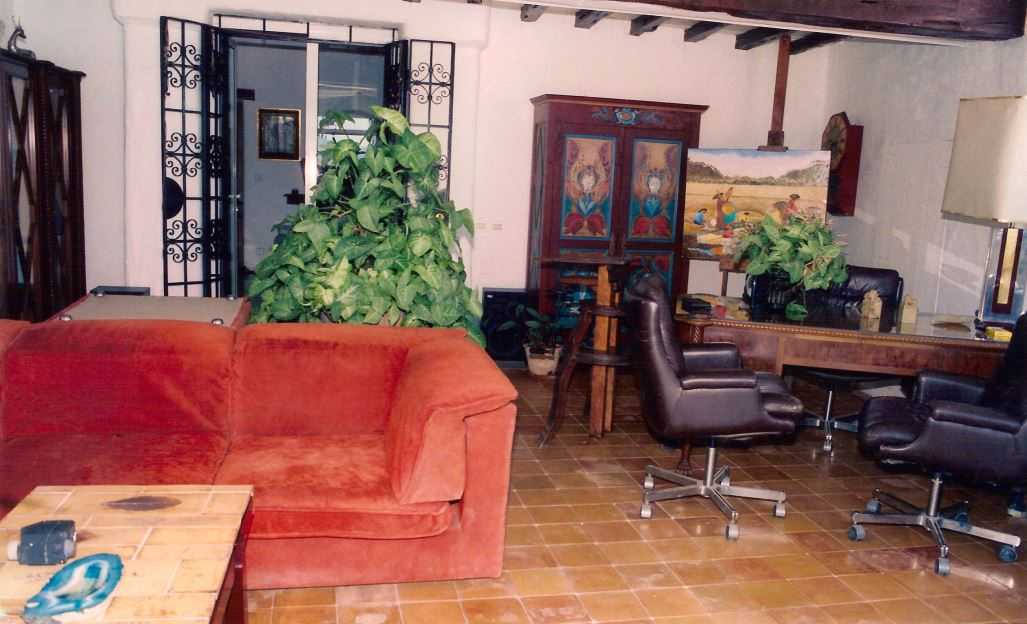 Authentic Finca with annex for guests in San Agustin