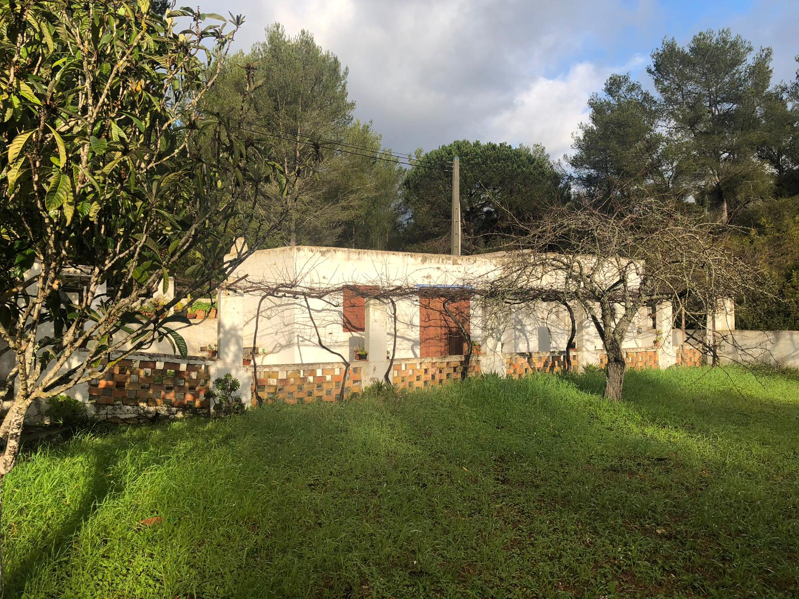 Landhouse in Santa Gertrudis with large Land