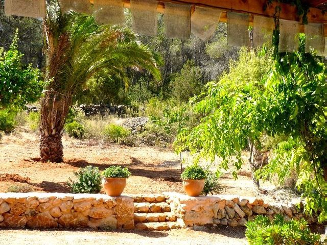 Finca in Santa Gertrudis with large plot for sale