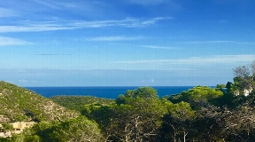 Nice urban land in Roca Lisa from 1200 sqm land with licence