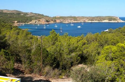 Plot for 10 villas with sea views in Portinatx -  Top Investment