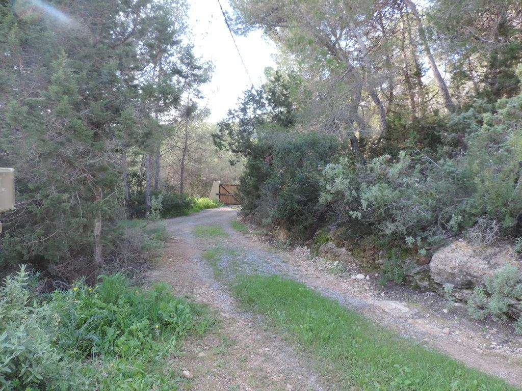 Rural finca on a huge plot of land with fruit trees sea views possible to extend close to Santa Eulalia