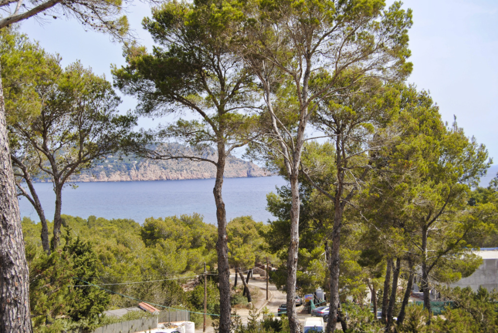 Plot with license and fabulous sea and countryside views on a hilltop in Sant Carles