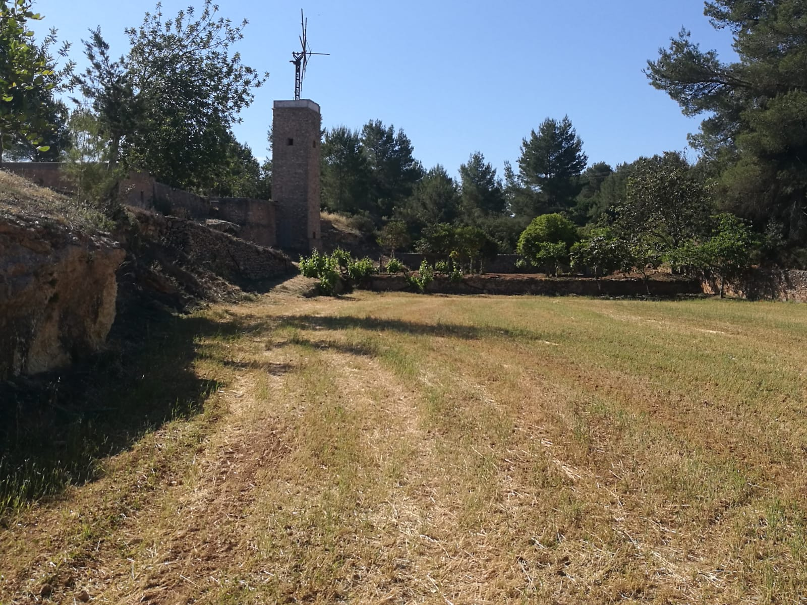 Authentic farmhouse to renovate with mill on a huge flat land near Santa Agnes
