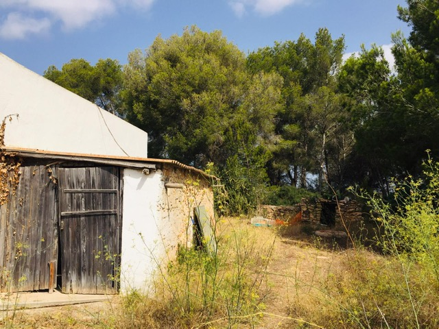 Casa payesa with high ceilings in need of renovation on a large flat plot close to Santa Eulalia