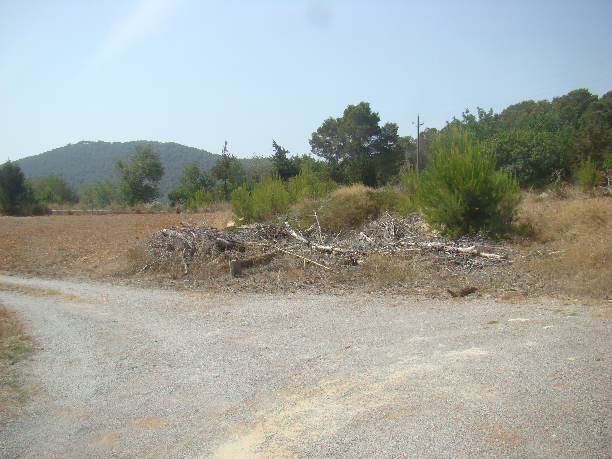 Common general rustic land agricultural scheme SRC-RG in S'Aigua blanca