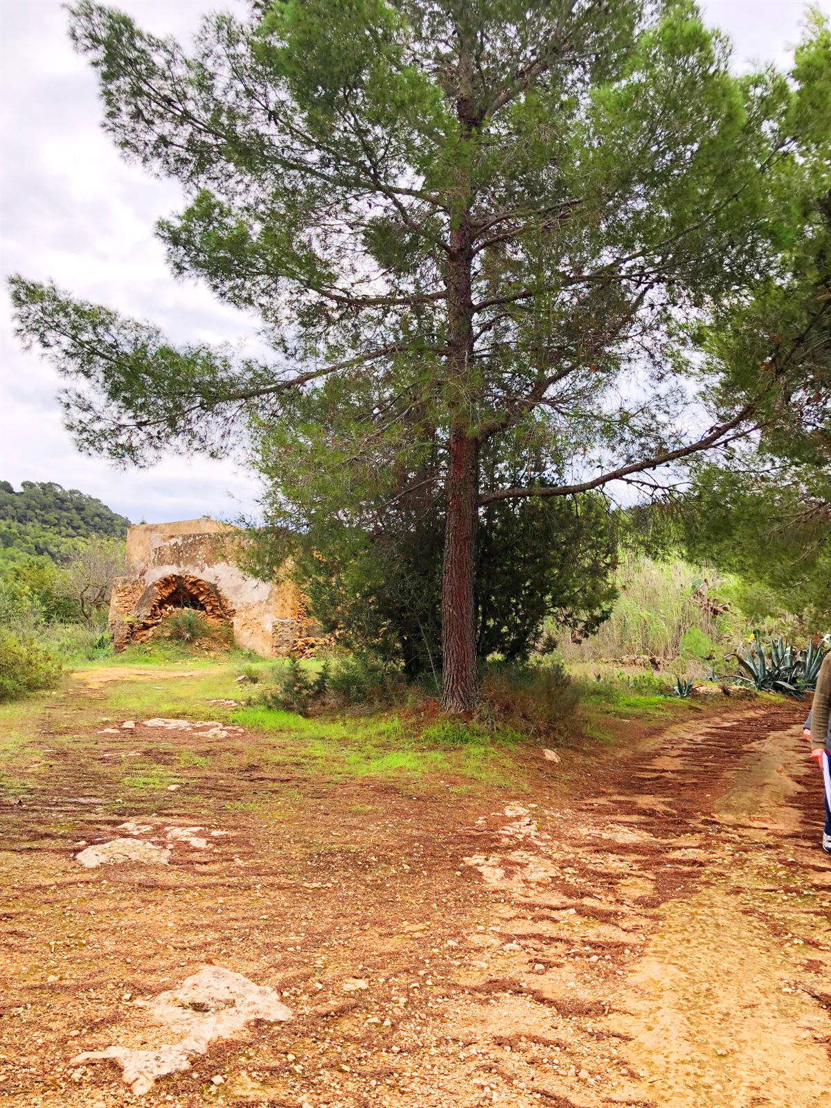 Ruin and big land of 72.000m2 in San Agustin for sale