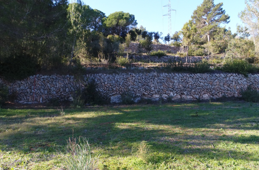 Land of 15.000m2 with license to build a house of 186m2 with pool in Santa Gerdrutis
