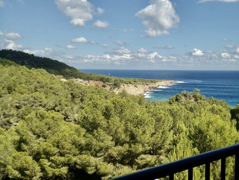 Apartment in Cala San Vicente with stunning views