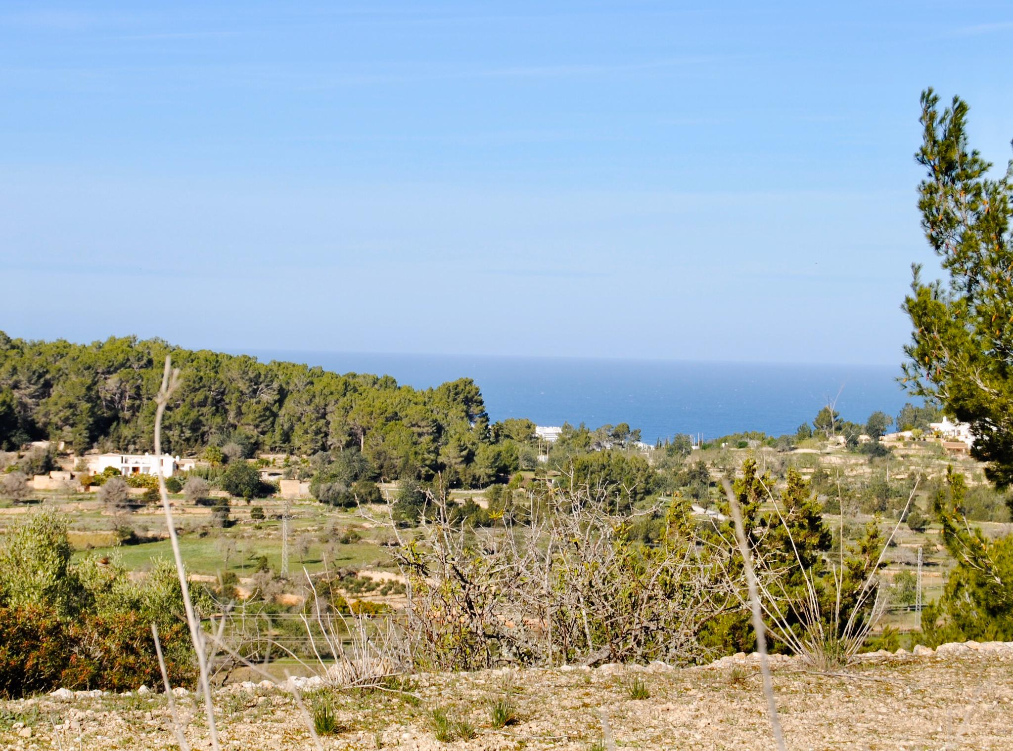 Fantastic Finca of 300 m2 surrounded by 60.000 m2 of land in Benimussa