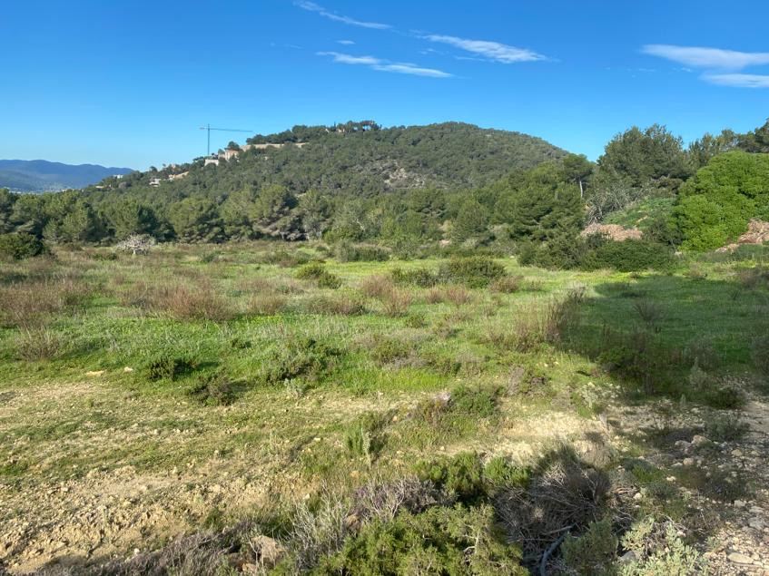Plot of 17.000 m² with spectacular panoramic views over the sea and the green hills