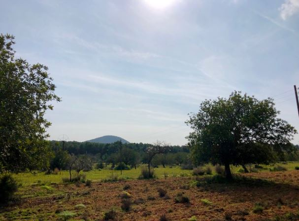 Plot has 20.000 sqm of land and offers a license for a 157 sqm house