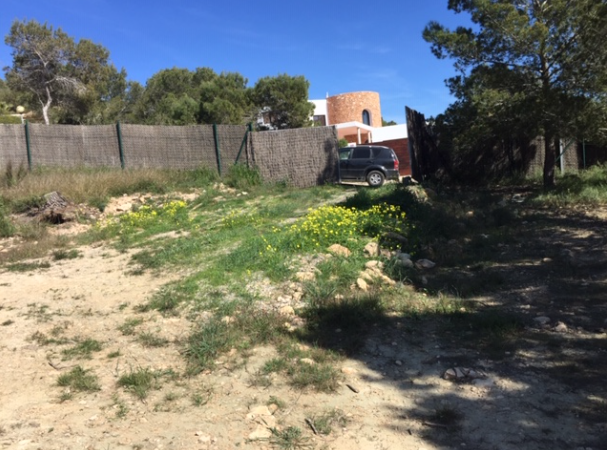 Plot with project and licence in Cala Tarida for sale