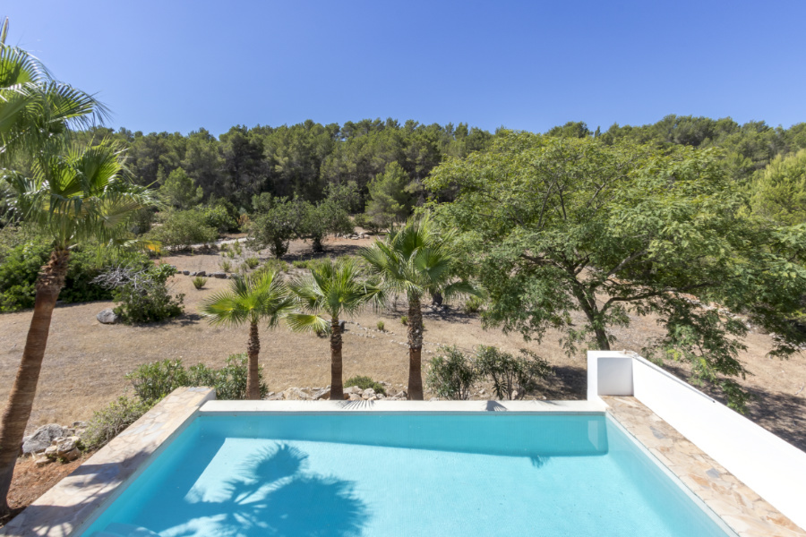 Contemporary country finca in forest near to Santa Gertrudis