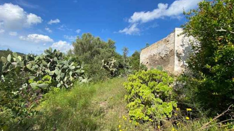 Old finca cradled in the countryside with ocean views near to the beach