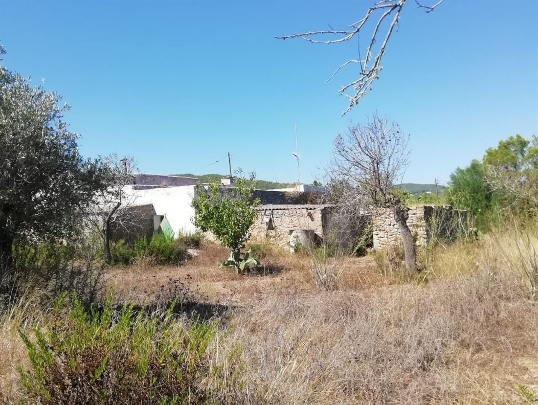 Old finca in San Miguel with large plot for sale