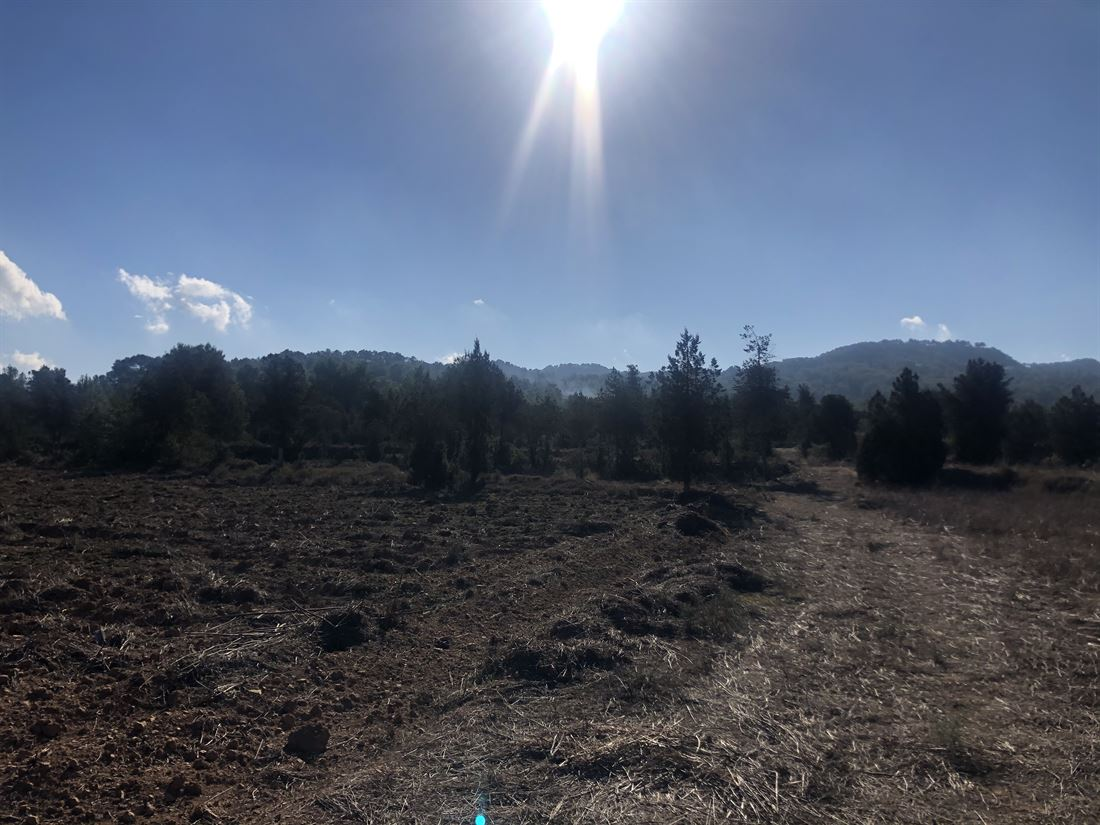 Land between San Agustin and San Antonio of 22.000m2
