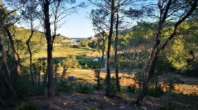 Plot of 61000 m2 with views of Port of Sant Miquel for the construction of a luxury home