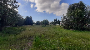Great urban land with 2000m2 in Jesus with privacy