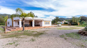 Large finca with two houses in Benimussa ideal for horse lovers