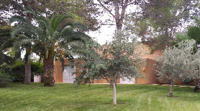 Fantastic villa with guesthouse and large garden walking distance to the beach